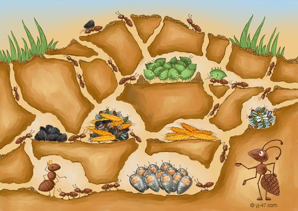 рисунок муравья: