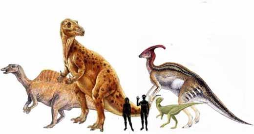 Орнитоподы, травоядные динозавры