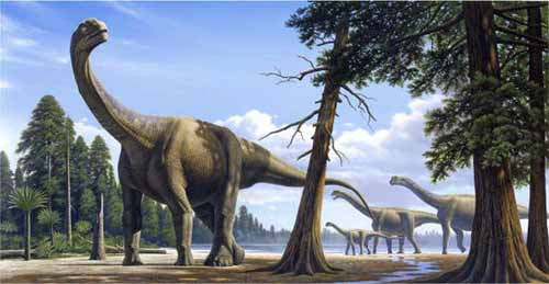 http://alligater.my1.ru/images_2/a_camarasaurus_7.jpg