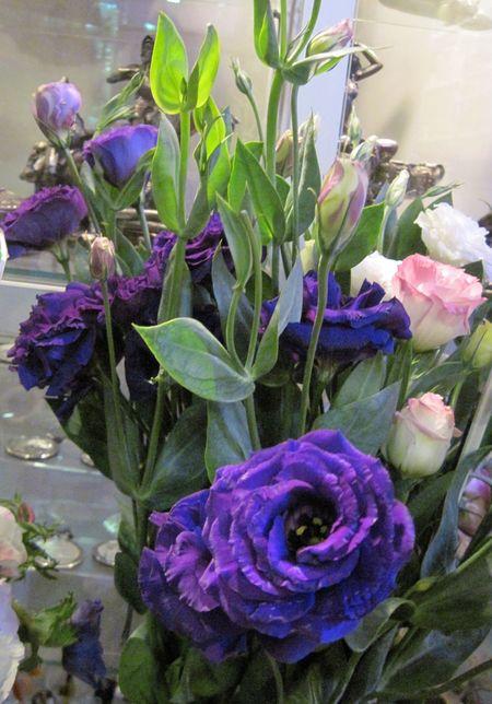 Благодаря роскошной палитре окрасок эустома (лизиантус) никогда не надоест: ведь этот цветок бывает и белым, и розовым, и голубым, и синим, и фиолетовым.