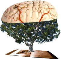 Древо Познания